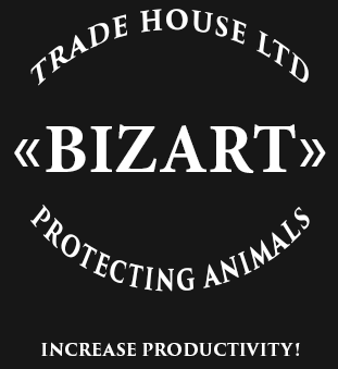 Bizart, increase productivity