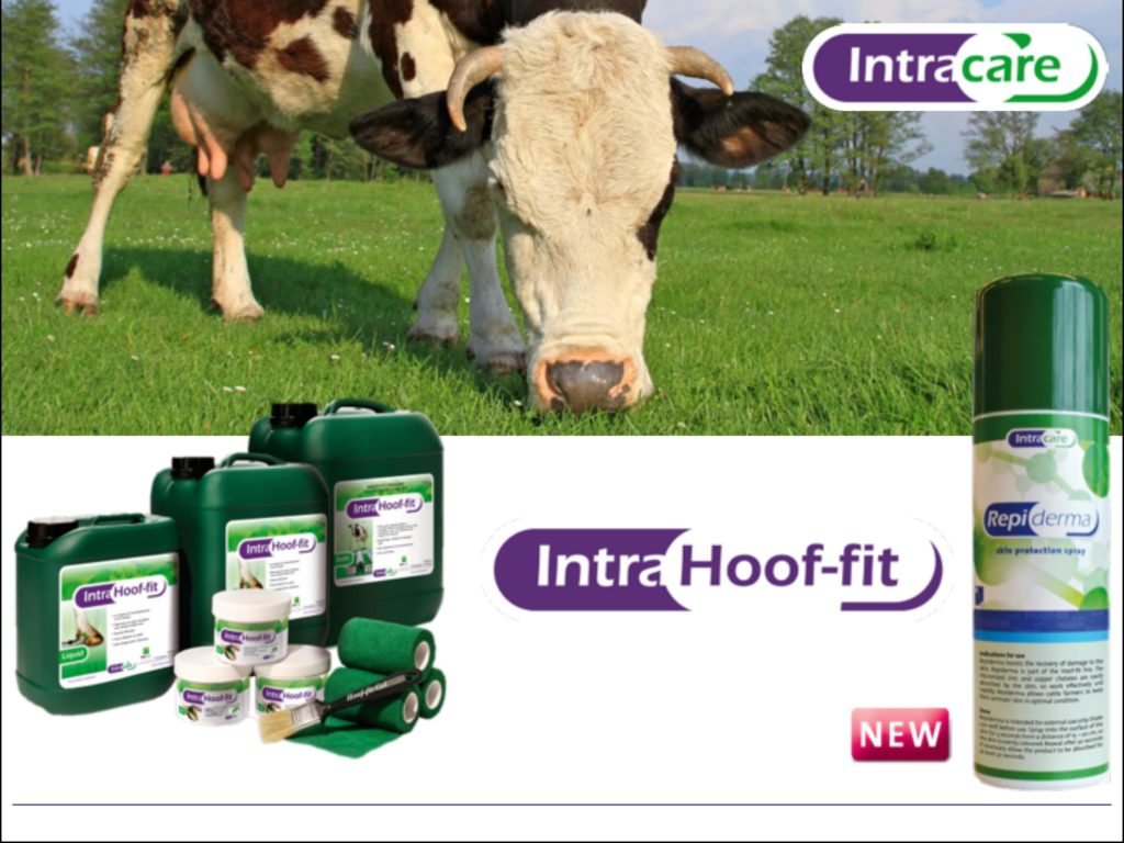 Спрей Intra Hoof-fit