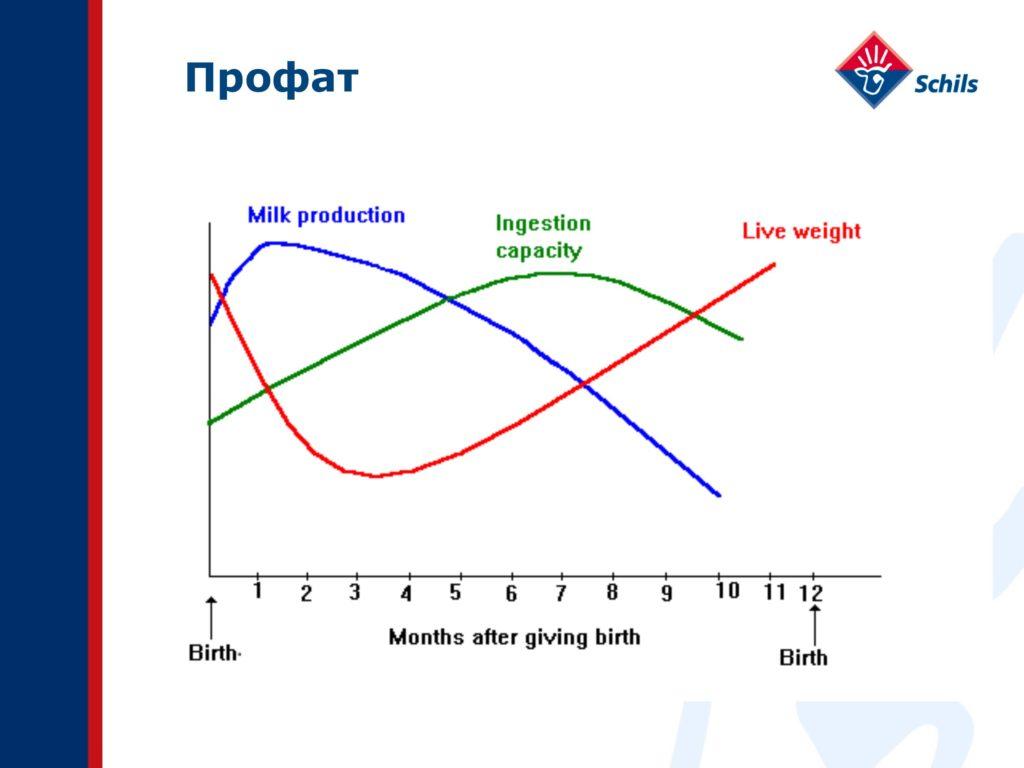 Профат – захищений жир для ВРХ