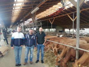 Mostyskoy Milk Ltd.