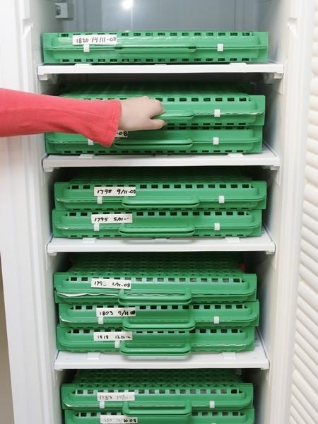 ColoQuick equipment for colostrum management