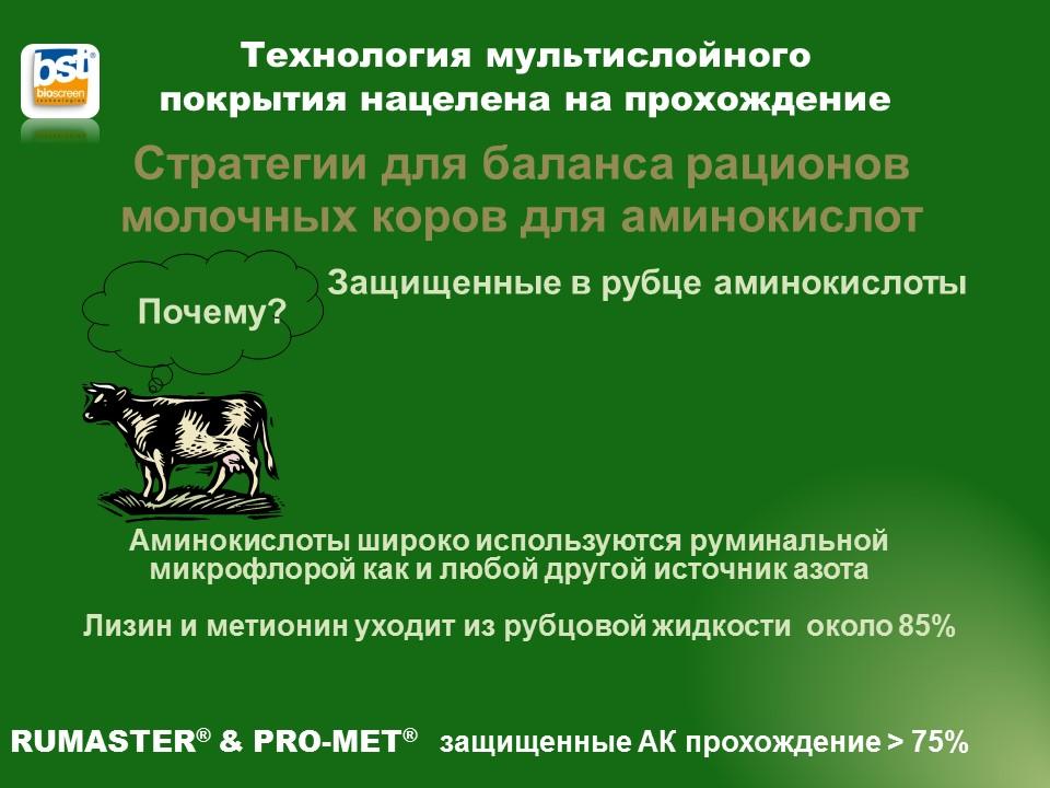 Румастер защищенный лизин