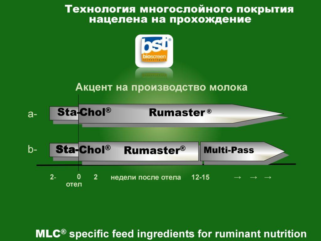 STA-CHOL rumen protected choline chloride