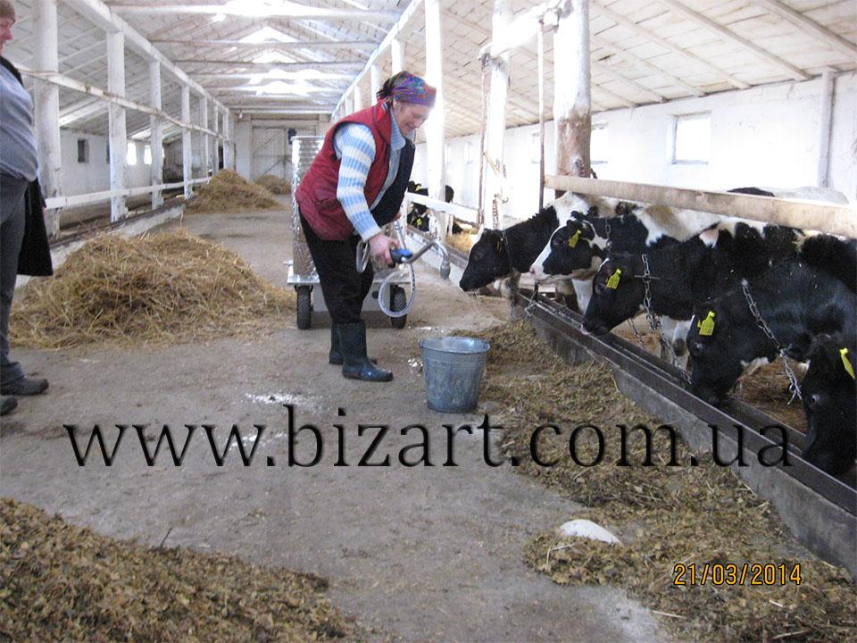 Voskobiynyky Farm