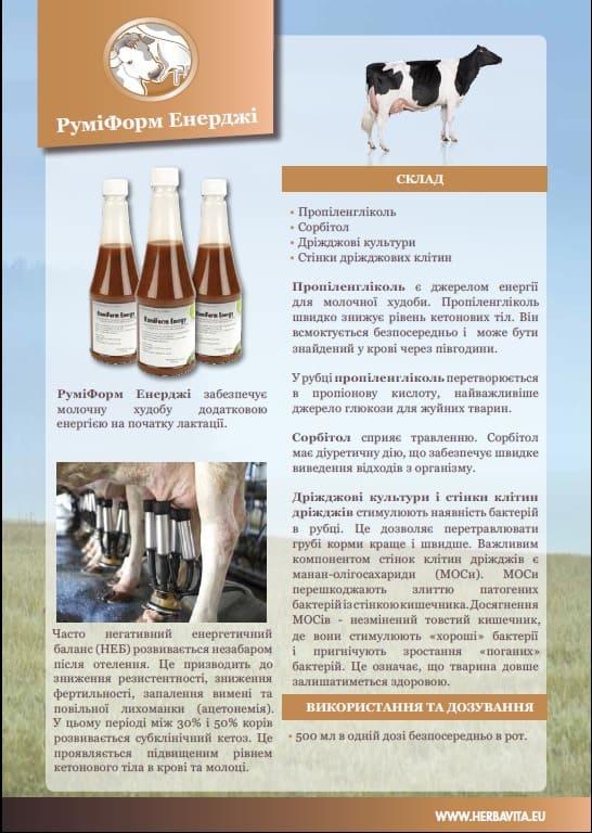 Rumiform Energy