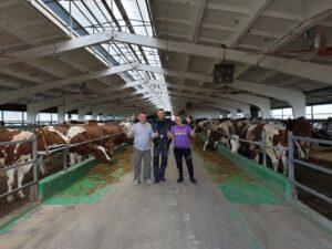 STOV AGROSVIT