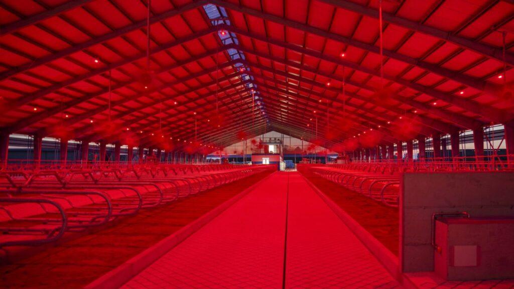 Белый & красный свет – LED Light CMP Lighting Technologies